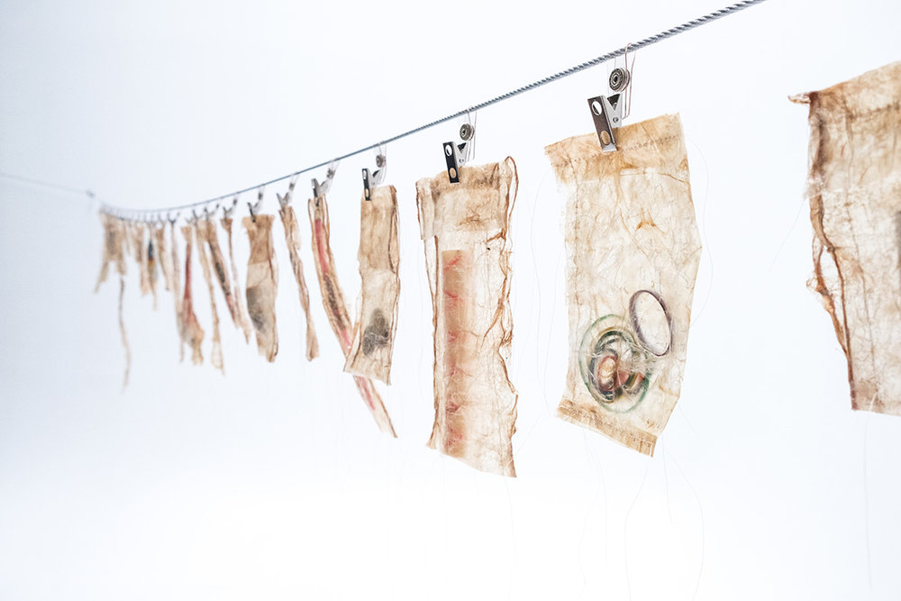Consumed, 2017, Maureen Gruben, beluga intestine, thread, found objects, dimensions variable, POR